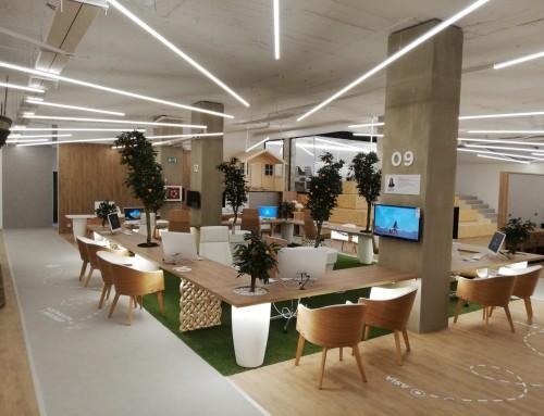 Segundo Pangea Store finalizado en Valencia: 800 m2 de superficie dedicados al turismo de autor.